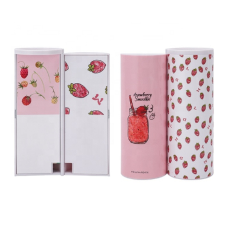 Kawaii Pencil Box Pink Color Double Layer Ballpoint Pen Case For Girls