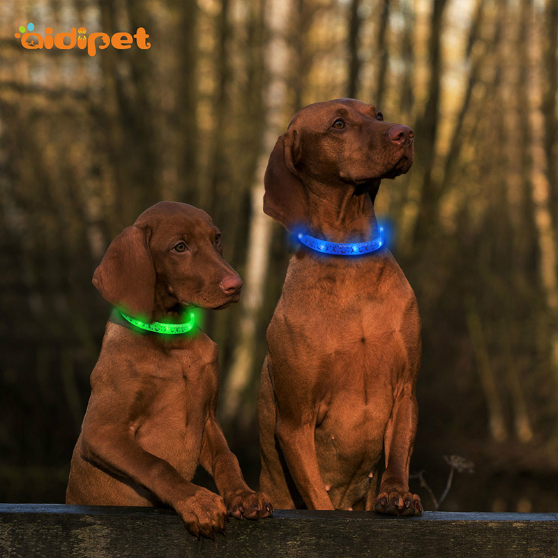 Promotional Colorful Usb Rechargeable Flashing Silicone Led Dog Collar Remote Control Waterproof Pet Collar And Leashes