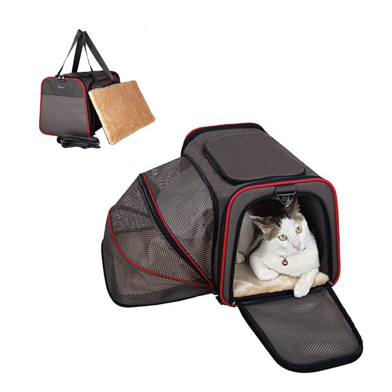 Airline Approved Pet carrier bag