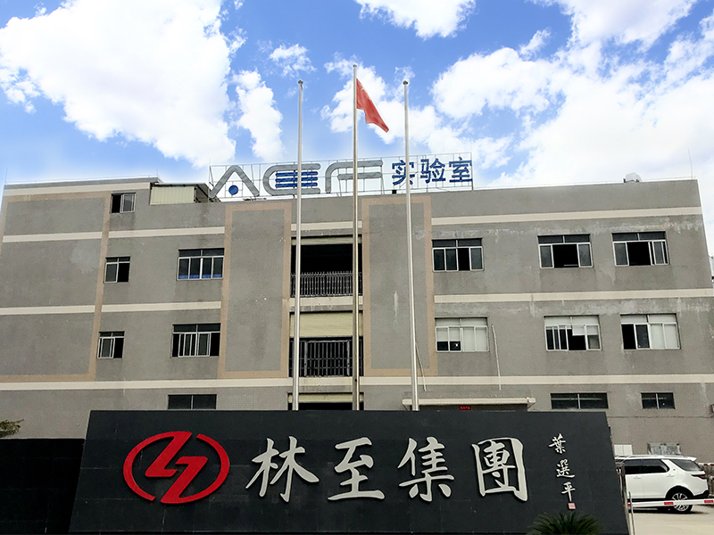 Foshan Linzhi Polymer Materials Science And Technology Co., Ltd.