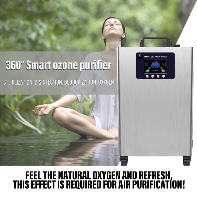 Household intelligent ozone air purifier