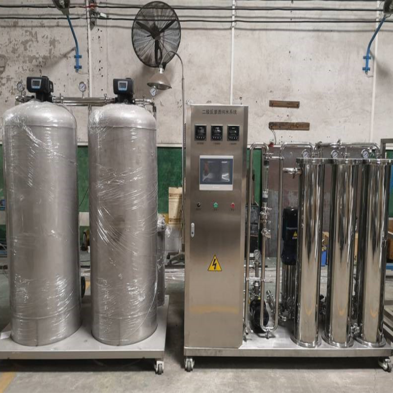 1 t/H secondary reverse osmosis purified water system