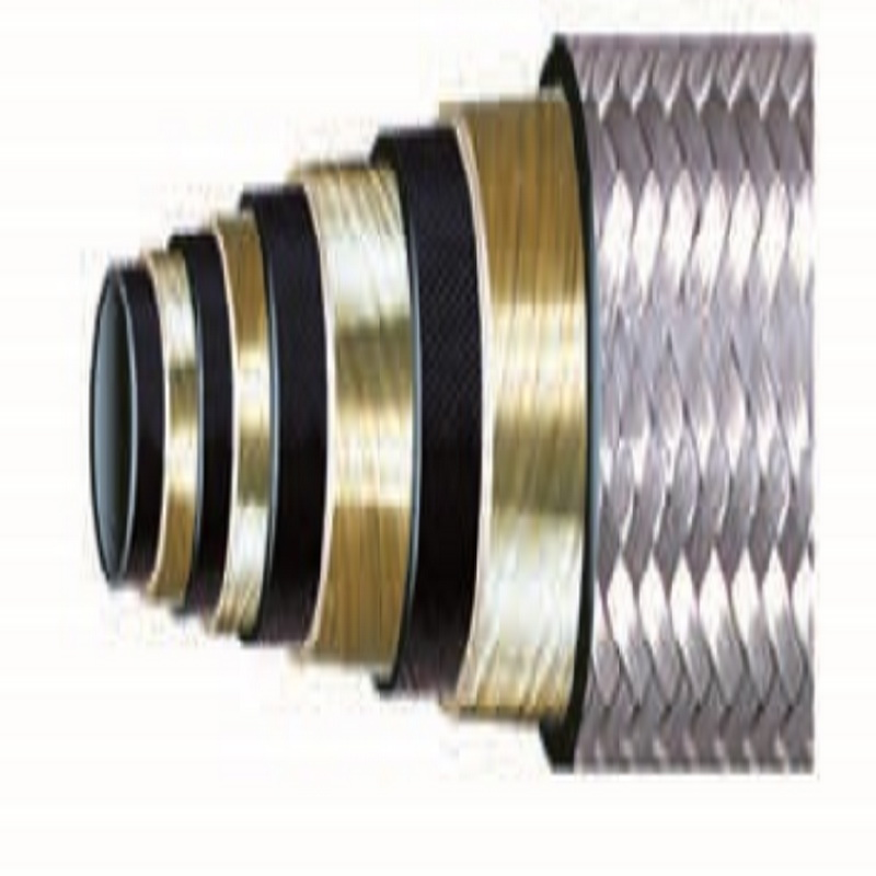 Union type & Flange type Flexible choke kill line